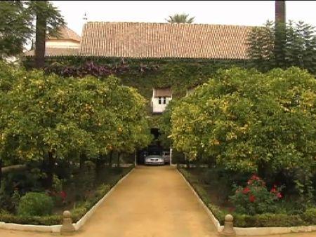 La familia y el pueblo Sevilla despiden a la Duquesa de Alba